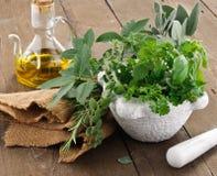 Aromatic herbs royalty free stock photos