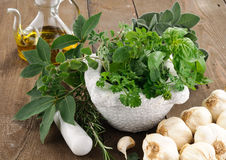 Aromatic herbs stock photography