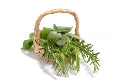 Aromatic Herbs Stock Photo