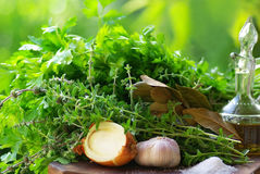 Aromatic Herbs . Royalty Free Stock Photography