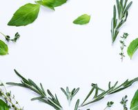 Aromatic herbs - basil, thyme, rosemary Royalty Free Stock Photography