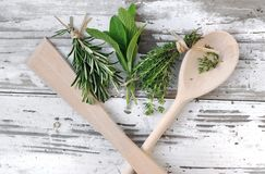 Aromatic herbs Royalty Free Stock Image