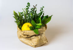 Aromatic herbs and lemon in a bag Royalty Free Stock Photos