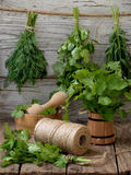 Aromatic herbs lovage, dill, cilantro, hyssop, sage, blue fenugreek, thyme. On a wooden background stock photos