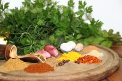 Aromatic herbs spices and condiments. Aromatic herbs from the organic garden and spices for cooking Royalty Free Stock Images