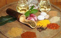 Aromatic herbs spices and condiments. Aromatic herbs from the organic garden and spices for cooking Royalty Free Stock Photos