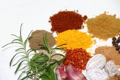Aromatic herbs spices and condiments. Aromatic herbs from the organic garden and spices for cooking Royalty Free Stock Photo
