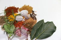 Aromatic herbs spices and condiments. Aromatic herbs from the organic garden and spices for cooking Stock Photography