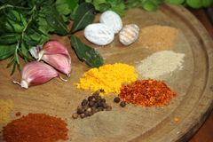 Aromatic herbs spices and kitchen condiments. Aromatic herbs from the organic garden and spices for cooking Royalty Free Stock Image