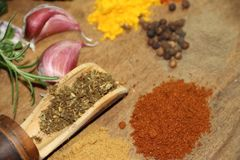 Aromatic herbs spices and kitchen condiments. Aromatic herbs from the organic garden and spices for cooking Royalty Free Stock Photography