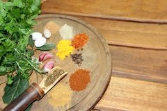 Aromatic herbs spices and kitchen condiments. Aromatic herbs from the organic garden and spices for cooking Stock Photo