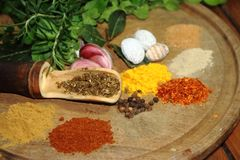 Herbs spices and condiments. Aromatic herbs from the organic garden and spices for cooking Stock Images