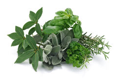 Aromatic herbs for roast Royalty Free Stock Images