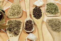 Aromatic herbs and seeds used as spices in cooking Royalty Free Stock Photos