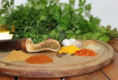 Aromatic herbs spices and condiments. Aromatic herbs from the organic garden and spices for cooking Stock Images