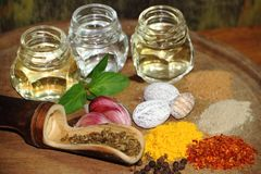 Aromatic herbs spices and condiments. Aromatic herbs from the organic garden and spices for cooking Stock Photos