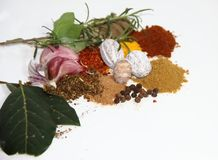 Aromatic herbs spices and condiments. Aromatic herbs from the organic garden and spices for cooking Stock Image