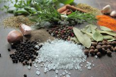 Aromatic herbs and spices Royalty Free Stock Photo