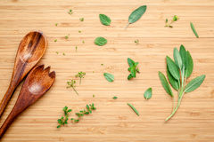 Aromatic herbs and spices  green mint ,fennel ,oregano, sage,lem Stock Photos
