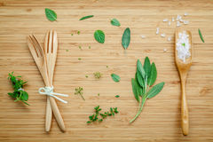 Aromatic herbs and spices  green mint ,fennel ,oregano, sage,ros Stock Photography