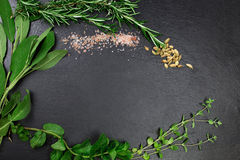 Aromatic herbs and spices over black slate sheet Stock Image