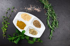 Aromatic herbs and spices over slate sheet Royalty Free Stock Photo