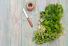 Aromatic, homeopathic herbs close-up stock image