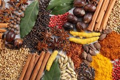 Aromatic Indian spices. Stock Photos