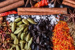 Aromatic Indian spices on a gray slate  background. Royalty Free Stock Image