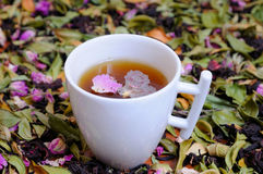Aromatic infusion of flower petals Royalty Free Stock Photos