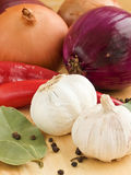 Aromatic ingredients. Garlic and onion, chili pepper, and spices. Shallow dof Royalty Free Stock Photo