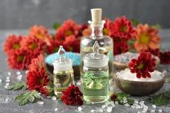 Aromatic ingredients Royalty Free Stock Photo