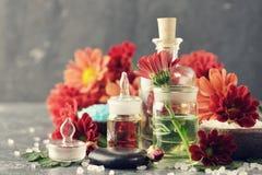Aromatic ingredients Royalty Free Stock Image