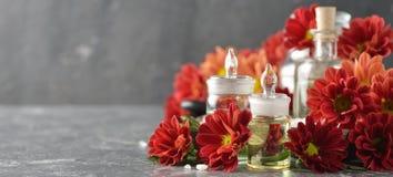 Aromatic ingredients Stock Image