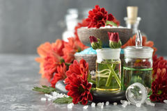 Aromatic ingredients Royalty Free Stock Images