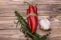 Aromatic ingredients with piquant savour Royalty Free Stock Image