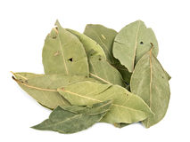 Aromatic laurel leafs Royalty Free Stock Photos