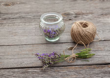 Aromatic lavender before drying Royalty Free Stock Photography