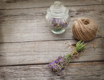 Aromatic lavender before drying Stock Images