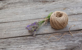 Aromatic lavender before drying Royalty Free Stock Image