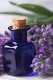 Aromatic lavender oil vertical macro Royalty Free Stock Photography