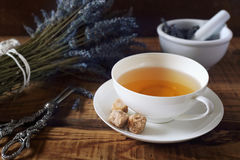 Aromatic lavender tea Stock Images