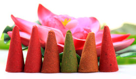 Aromatic mud cones Stock Image