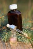 Aromatic oil extract from fir Stock Image