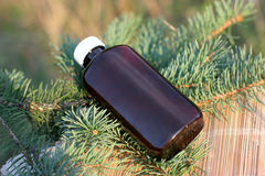 Aromatic oil extract from fir Stock Photography