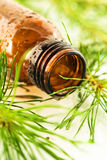 Aromatic oil fir Bath Royalty Free Stock Image
