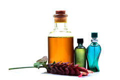 Aromatic oil and perfume bottles Royalty Free Stock Images