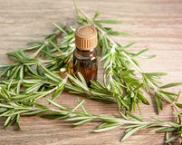 Aromatic oil of rosemary Royalty Free Stock Image