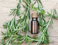 Aromatic oil of rosemary Royalty Free Stock Photos