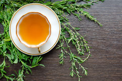 Aromatic organic natural herbal knotweed tea Stock Images